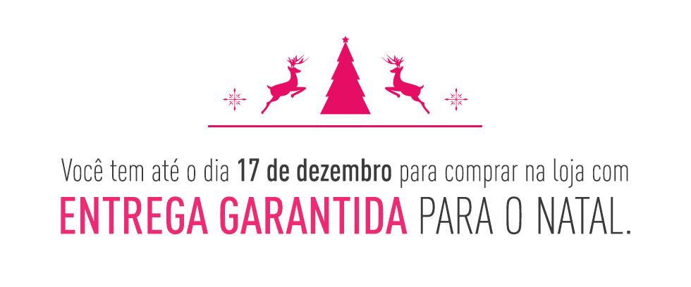 Banner Entrega Garantida