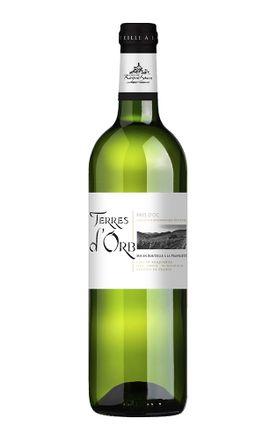 vinho-branco-frances-terre-d-orb-languedoc