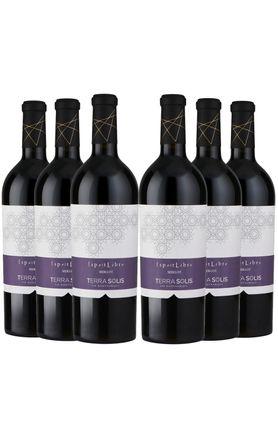 terra-ventoux-tinto-espirit-6-garrafas