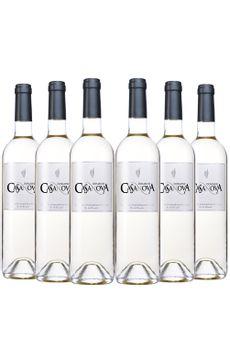 casanova-branco-6-garrafas